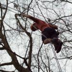 Kletterpark Geier